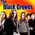 Black Crowes - Feloszlik a Black Crowes