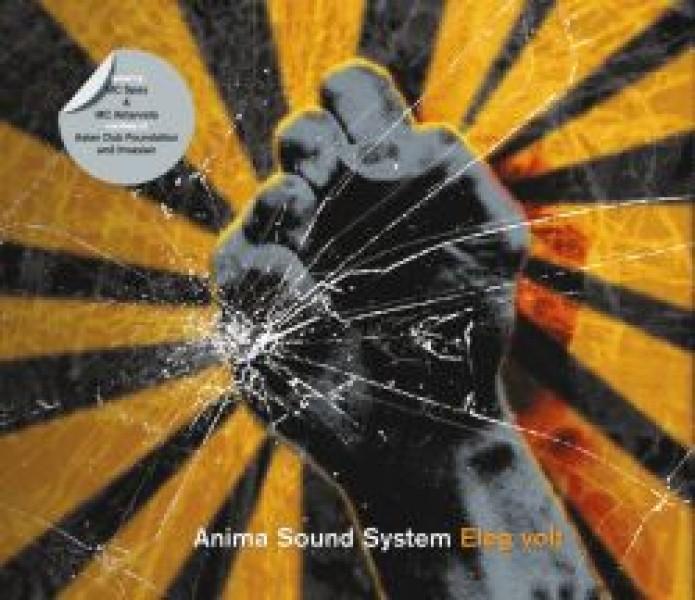 Anima Sound System Net Worth