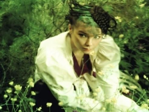 Björk - Declare Independence!