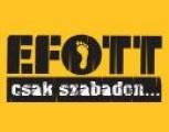 EFOTT - 2008-as EFOTT Dunaújvárosban