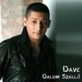 Dave - Remixeld Dave dalát!