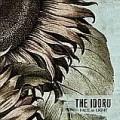 The Idoru