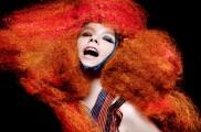 Björk - Björkkel dolgozik David Attenborough