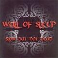 Wall Of Sleep
